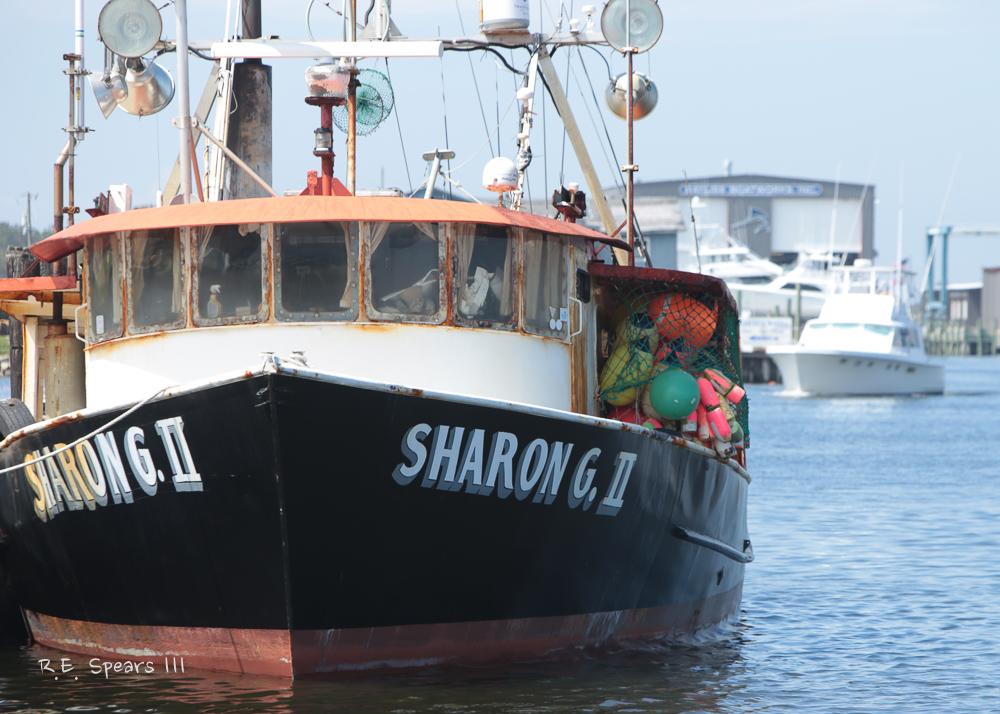 SharonGboat
